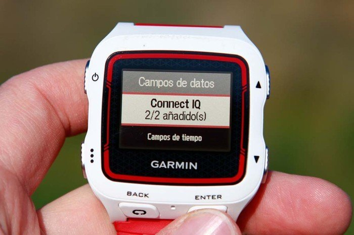 Garmin Forerunner 920xt - Campos Connect IQ