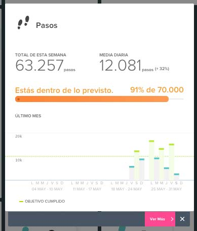 Fitbit Charge HR - Panel web