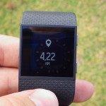 Fitbit Surge - Widgets