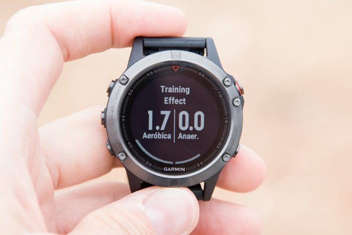 Garmin Fenix 5 - Training Effect